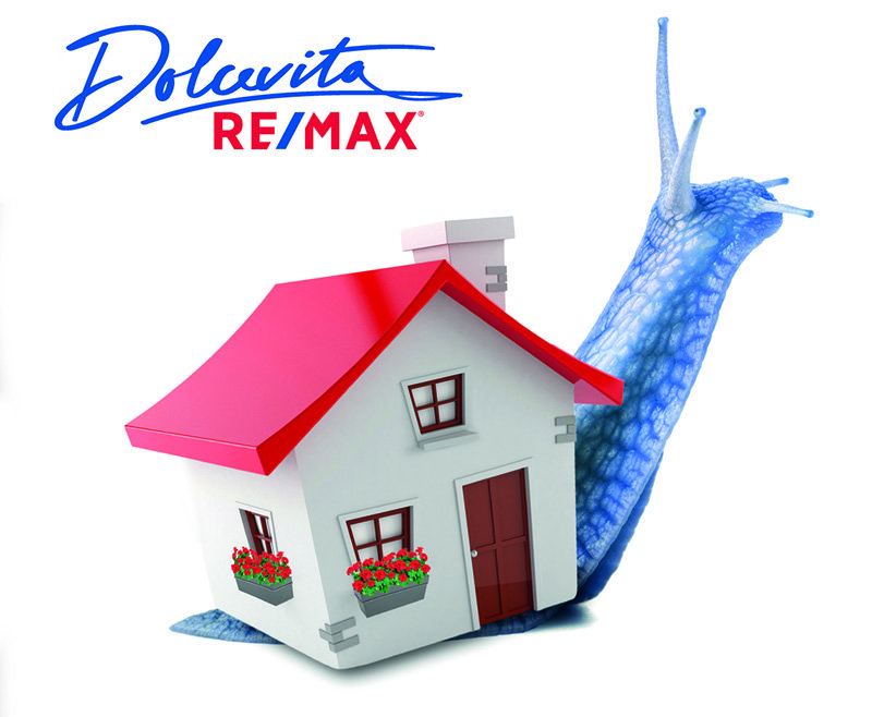 brochure remax