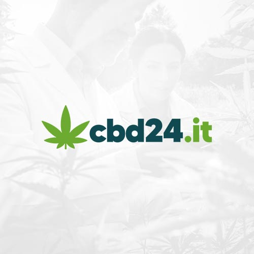 cbd24 cannabis light